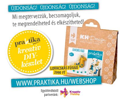 Praktika webshop_18aprilis