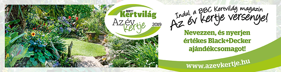 AzEvKertje_2019