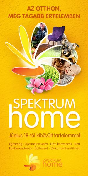 Spektrum_180611_oldalso